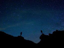 Nuit étoilé