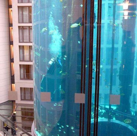 Aquarium ascenseur